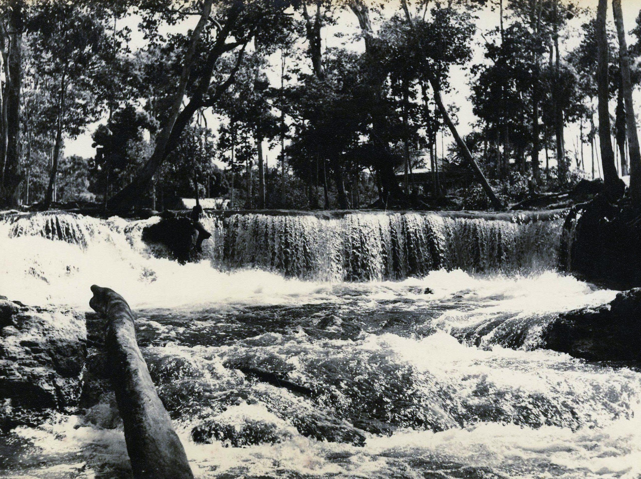 Cachoeira do Tarumãzinho - Instituto Durango Duarte