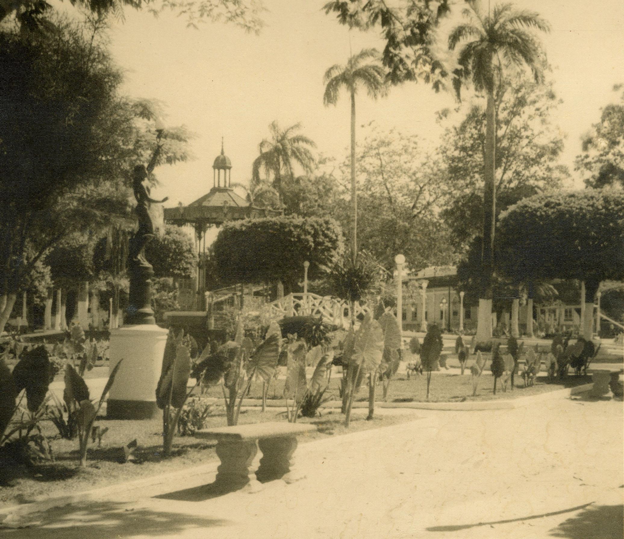 Arborização da Praça da Polícia - Instituto Durango Duarte