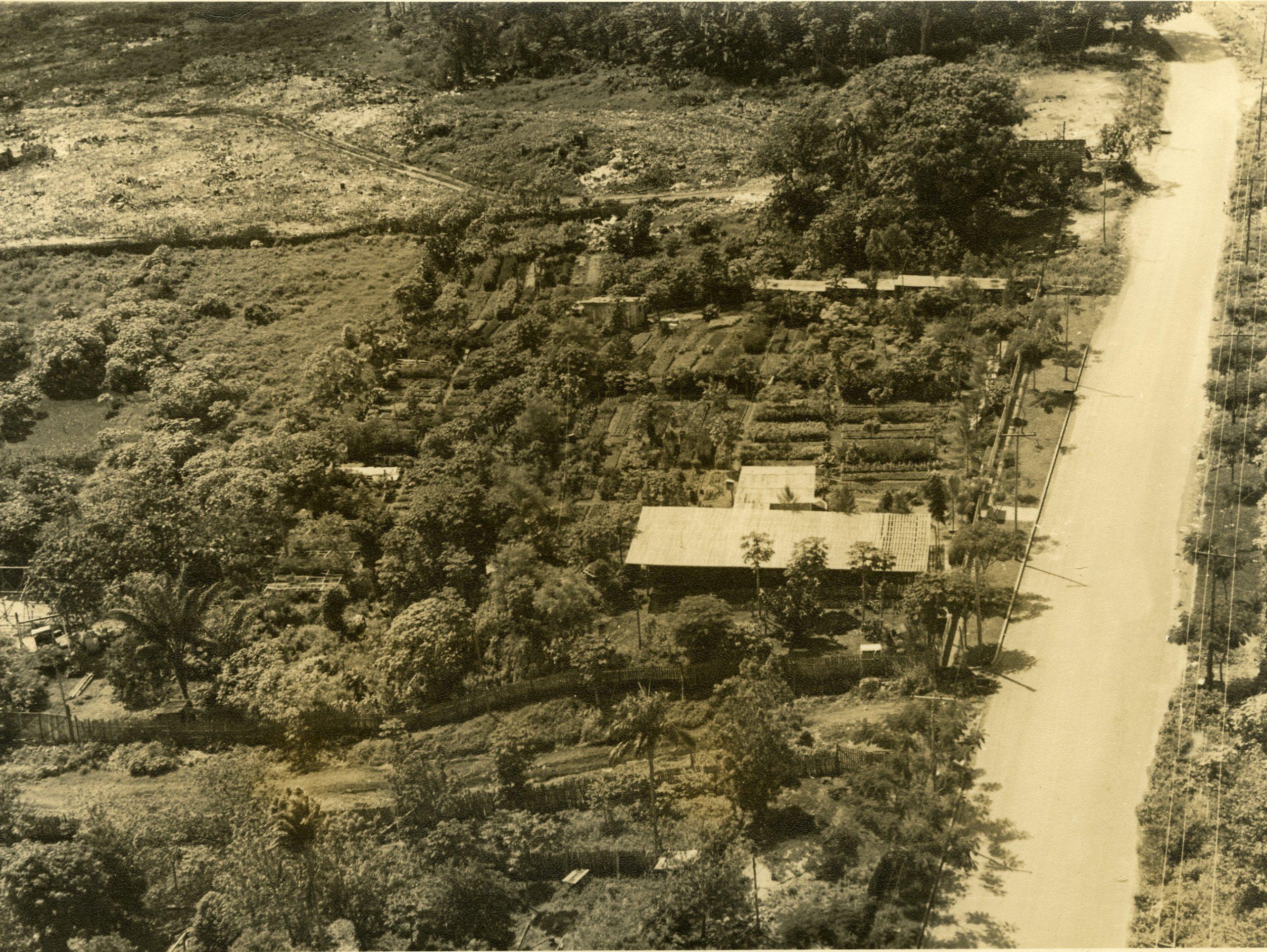 Fotografia Horto Municipal de Manaus - Instituto Durango Duarte