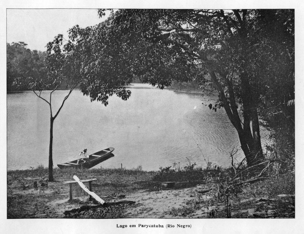 Uma Vista do Lago do Paricatuba