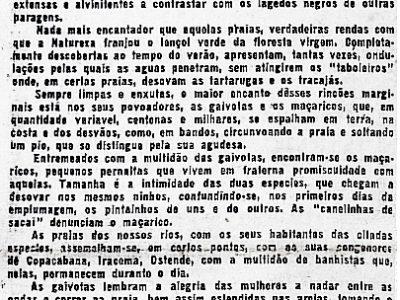 Praias, Gaivotas e Maçaricos, de Agnello Bittencourt