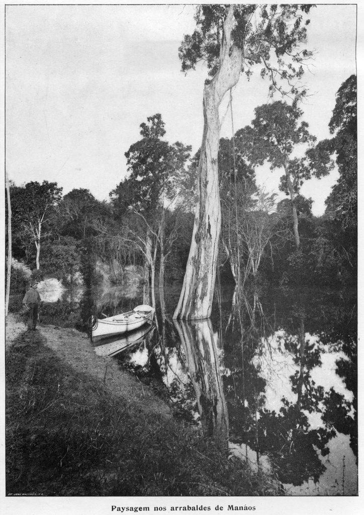 Paisagem dos Arredores de Manaus