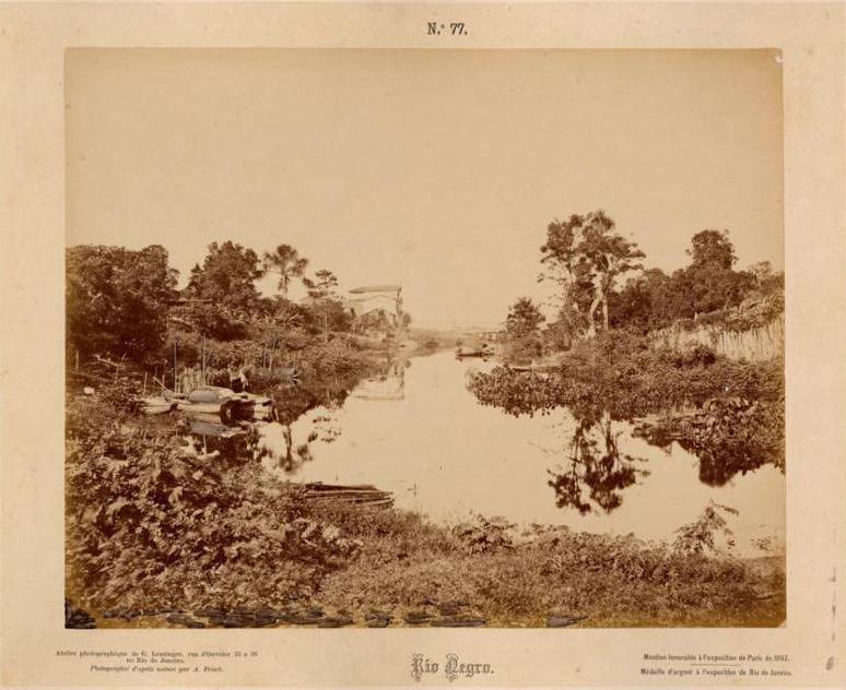Imagem do Rio Negro e sua vegetação - Instituto Durango Duarte