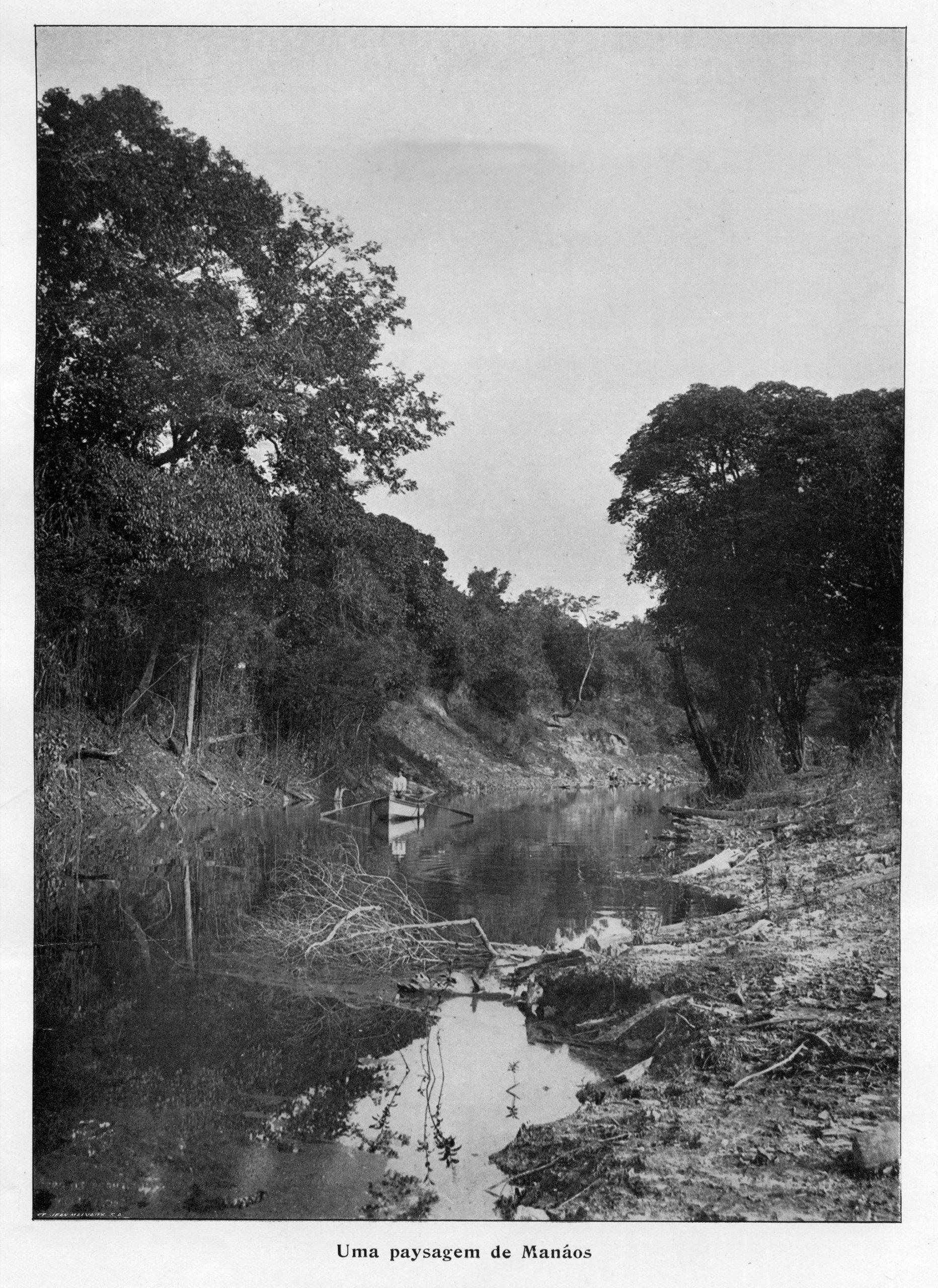 Uma das Paisagens de Manaus (Parte 2)