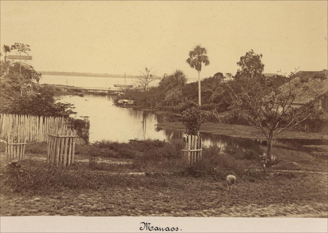 Vista ribeirinha de Manaus - Instituto Durango Duarte