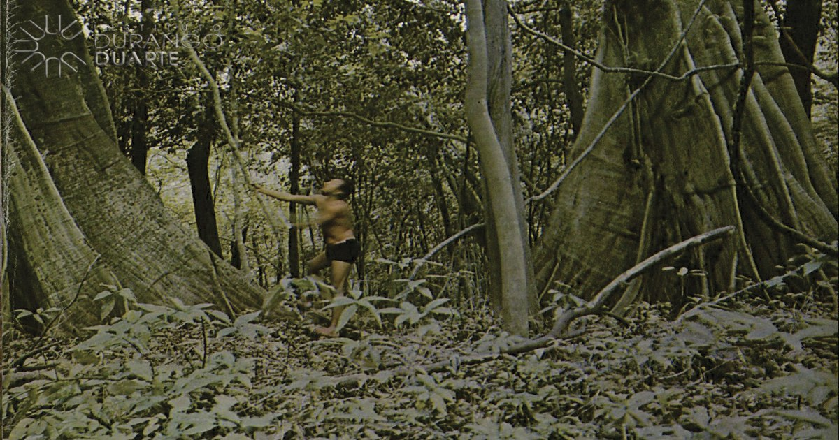Amazônia e suas riquezas