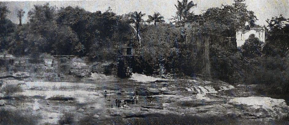 Um recanto do Éden, igarapé do bairro de São Jorge